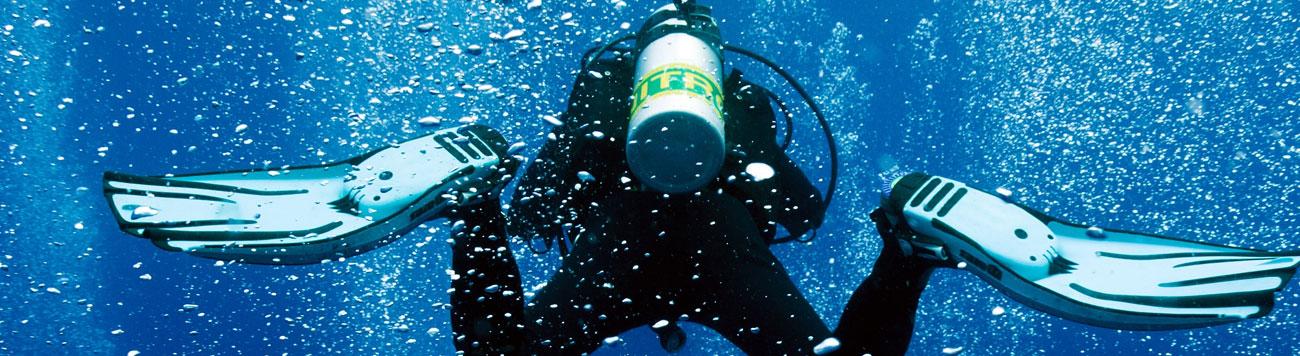 Enriched Air Diver (Nitrox) Diving