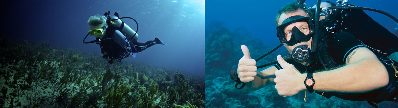 Self-Reliant Diver Conservation